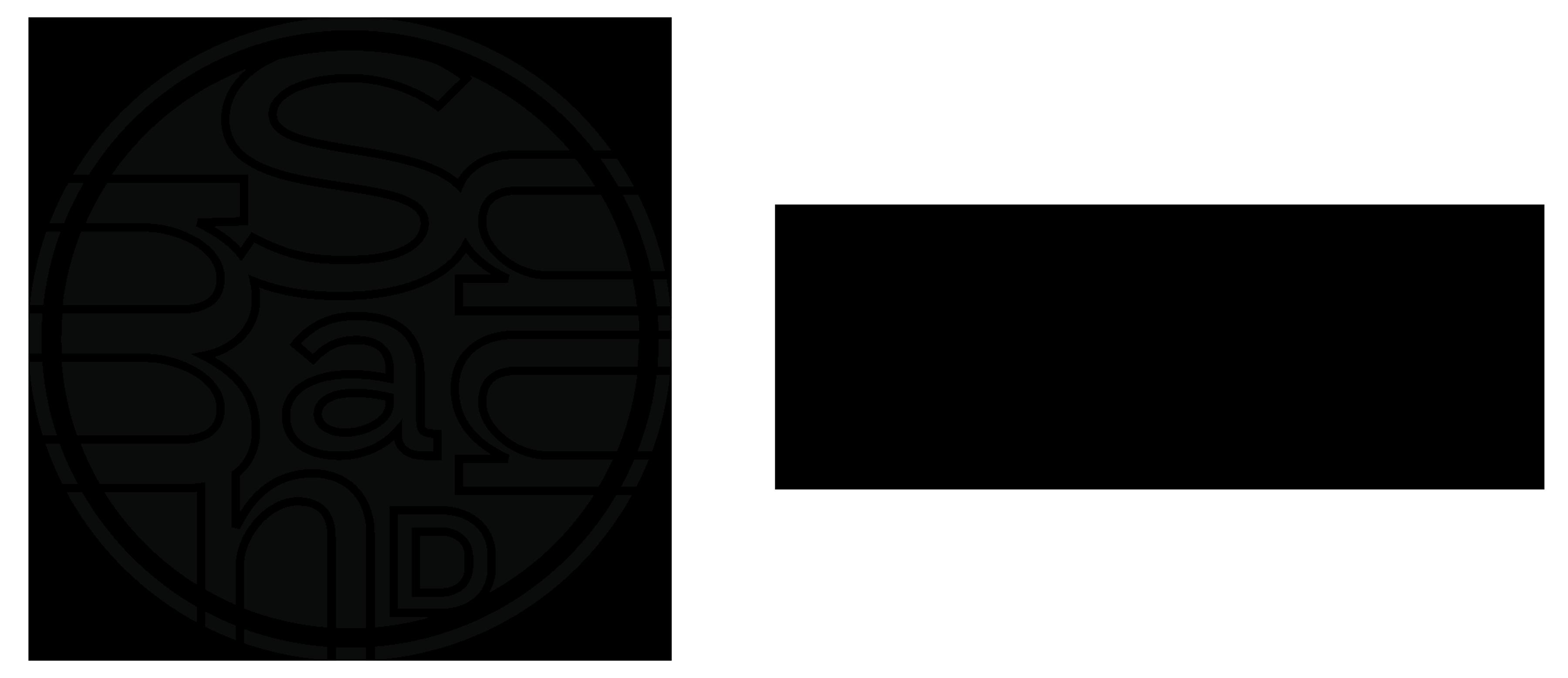 Logo Sandmann Ventures